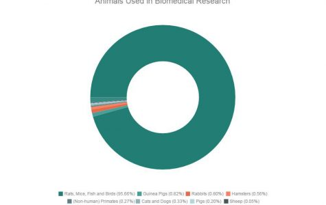 Biomedical animal research should be the least of our animal welfare concerns