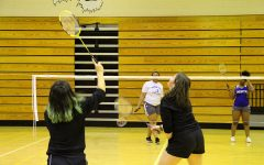 South badminton team wins with flying birdies