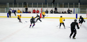 East/West hockey merger expected to strengthen Minneapolis hockey