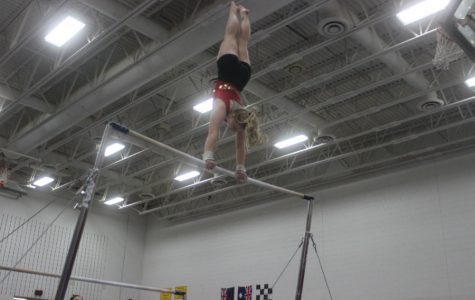 Pictured above is South gymnast Sophie Truen at the January 21st Henry Sibley invitational. It's been a great season for Sophie. While she has won top scorer  before, she won the Minneapolis's All City meet with a total of 34.25 points. A personal best for Truen.  Photo courtesy of Sara Helmstetter.