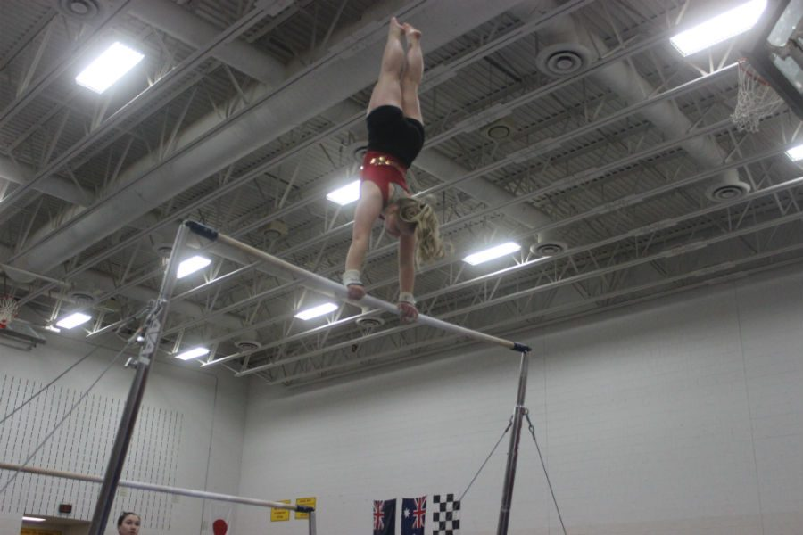 Pictured+above+is+South+gymnast+Sophie+Truen+at+the+January+21st+Henry+Sibley+invitational.+It%27s+been+a+great+season+for+Sophie.+While+she+has+won+top+scorer++before%2C+she+won+the+Minneapolis%27s+All+City+meet+with+a+total+of+34.25+points.+A+personal+best+for+Truen.+%0APhoto+courtesy+of+Sara+Helmstetter.