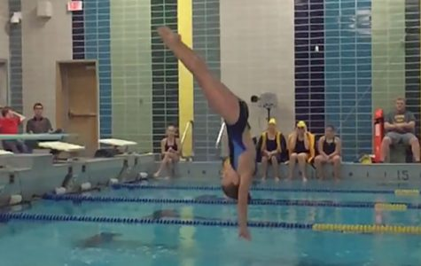 Did you know: South has one diving team member