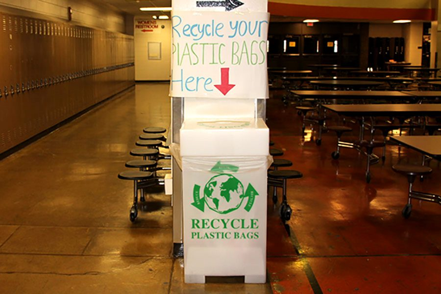 """Green Tigers provided new recycling bins to increase the recycling of plastic. """"We saw this as an opportunity, something we could improve at South to make a difference"""", said  junior Isaiah Bischoff, a club coordinator for Green Tigers."""