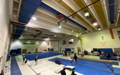 Gymnastics team faces recurring challenges due to lack of support