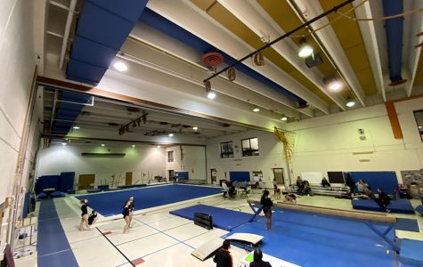 """The gymnastics team practices at North Star Elementary School, where they share a gym with Washburn, Southwest, Edison, Henry, and North high schools. """"We go to North Minneapolis, and there's a facility there called North Star that we got 6 years ago, that's where all the gymnastics teams go to practice,"""" said Gabby Stickney."""
